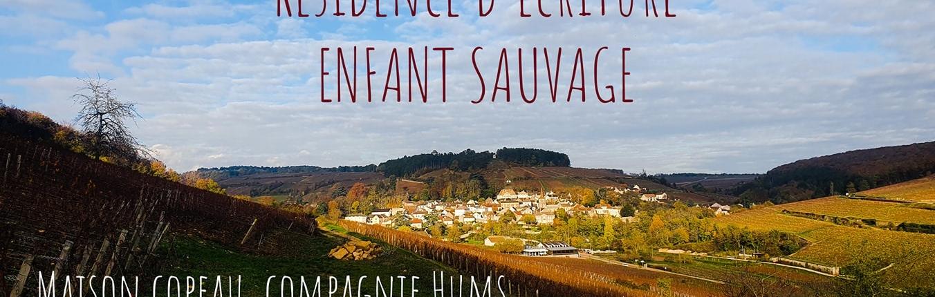 """Résidence """"L'enfant Sauvage """" Compagnie Hums"""